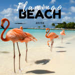 flamingo-beach2