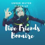 dive-friends