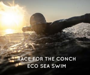 eco-swim2