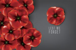 lest we forget - remembrance day