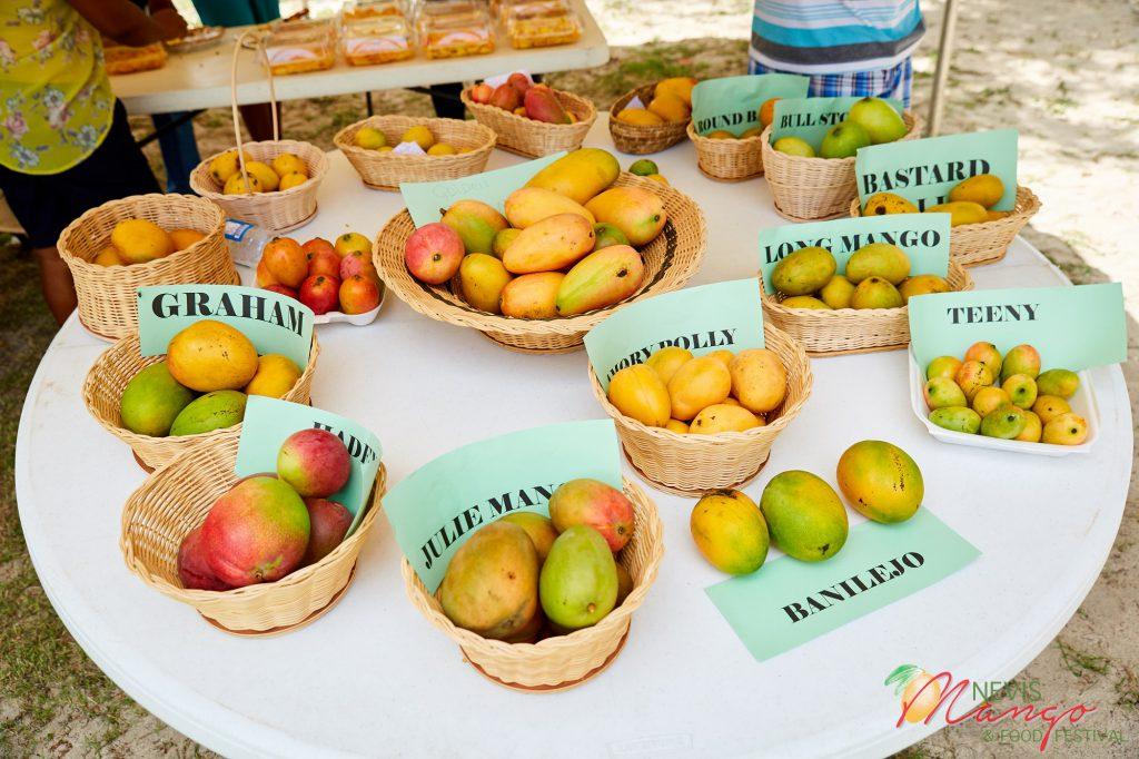 Photo credit: Nevis Tourism Authority