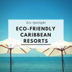 eco-friendly-resorts