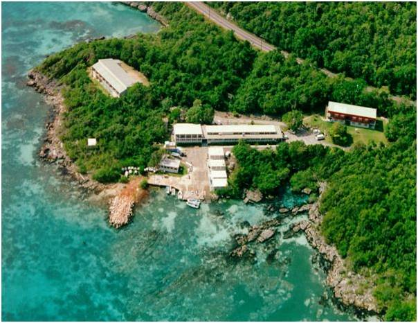 Aerial view of the marine lab at Discovery Bay, St Ann.