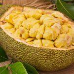 Fresh ripe jackfruit.