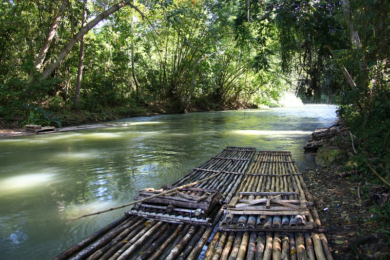 Two bamboo rafts on the Martha Brae River in Jamaica.
